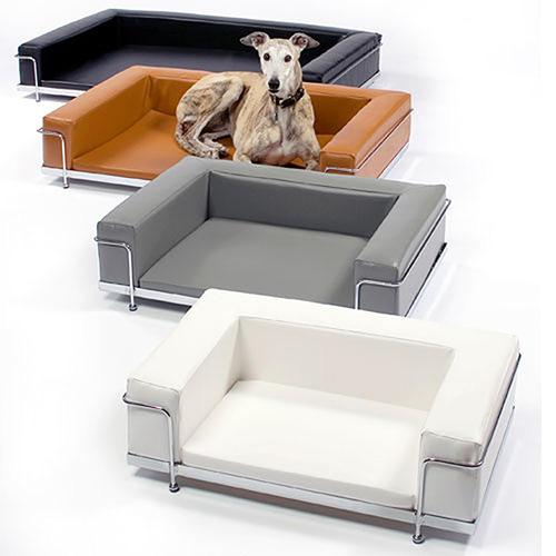 le-corbusier-dog-2