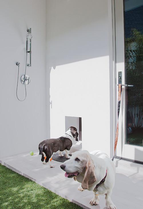 out door dog shower