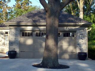 driveway_tree